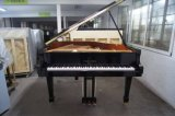 [Chloris] Ebony Polish Grand Piano (HG-158E)