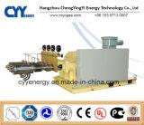 Uninterrupted Service Large Flow and High Pressure LNG Liquid Oxygen Nitrogen Argon Multiseriate Piston Pump