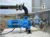 Surface Mounted Electric Pump/Surface Pump