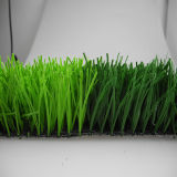 8 Years Guaranty Football/Soccer Artificial grass (Y50)