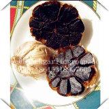 an Emerging Food in Black Garlic