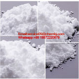 China Factory Direct Sale Tranexamic Acid