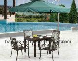 Outdoor /Rattan / Garden / Patio/ Hotel Furniture Cast Aluminum Chair & Table Set (HS1186C &HS 7310DT)
