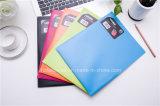 Two Pockets File Folder, Colorful File Bag