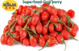 Red Dry Organic Ningxia Wolfberry--380 Grains/50g