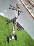 Outdoor Smart Electric Folding Three Wheels Tricycle/Kick Skateboard