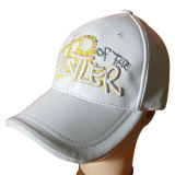 Leather Baseball Cap with Embroidery (LT-1)