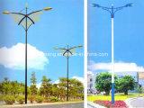 New Model LED Street Light