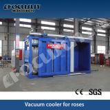 Flower / Vegetable / Meat Vacuum Cooler