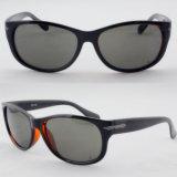 Quality Designer Simple Fashion Sunglasses with FDA Certification (91081)