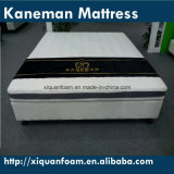 Firm Cheap Compressed Foam Portable Vacuumed Roll up Mattress