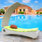 Beach Swimming Pool Outdoor Lounger Chair Wicker / Rattan Sun Lounger / Rattan Sun Bed T529