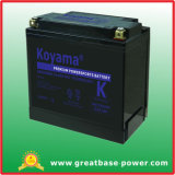Golden Quality Motorcycle Battery 21ah 12V