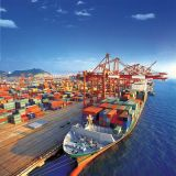 Container Logistics From China/Ningbo to Algiers