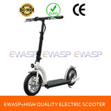 300W 500W Two Wheel Folding E Scooter/E-Scooter for Adult