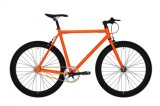 Customized Single Speed Fix Gear Bicycle