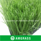 for Football Feild Green Artificial Turf (ASS-60D)