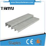 20 Ga 1/2 Inch 80 Series Staples Stainless Steel Similar to Bea 80 Staples