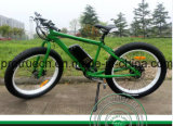 Mountain Electric Bicycle with Pedal Assisted