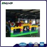 Cartoon PVC Tarpaulin Inflatable Water Toy