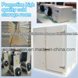 Promotion High Quality Cold Storage Room