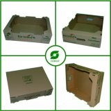 Different Shape Dry Cardboard Box for Fruit and Vegetable Wholesale