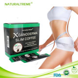 Private Label Slimming Coffee with L-Carnitine Powder