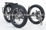 26X4 Wide/Fat Tire 3 Wheeler Bike/Three Wheel Bicycle/Fatty Trike/Snow Tricycle/Fat Trike/Sand Trike/All Terrain Tricycle