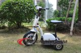 3 Wheel Easy Rider City Electric Motor Scooter Es5013 with Child Seat Scooter on Sale