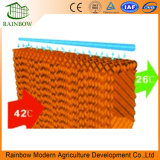 Good Price Evaporative Cooling Pad for Greenhouse