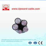 XLPE Insulation PVC Sheathed Power Cable (YJLV)