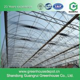 Arch-Type Film Greenhouse for Modern Agriculture