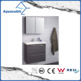 Bathroom Vanity with Mirror Cabinet in Black (ACF8922)