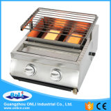 Two Burner Stainless Steel Gas BBQ Grill