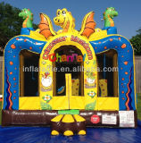 Inflatable Bouncer Bb162