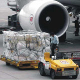 Compass Shipping From Shenzhen to Manzanillo / Mexico City (IX13)