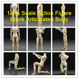 Blank Male Articulated Figure Body, 1/6th Scale Action Figure Body (TGE010)
