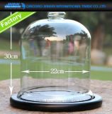 22*30cm Regular Glass Cloche Bell Jar Dome with Bamboo Tray