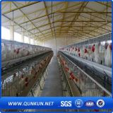 Factory Price Chicken Wire Cage for Sale