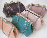 Fashion Metal Frame Evening Bags, Promotion, Gifts, Wallet, Purse, Coin Bags, Woman Bags