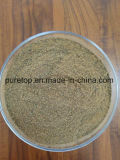 Fish Meal Powder for Fish Feed