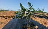 Garden Supplies Weed Contro Mat Ground Cover