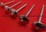 Umbrella Head Roofing Nails, Hot Sale Galvanized Roofing Nails