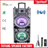 Temeisheng Dual 10 Inch Portable Bluetooth Speakers with Radio Wireless Music Box with Trolley and Wheel F10-23