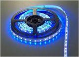 5050 60LED/M 24V Non-Waterproof White LED Flexible Strip