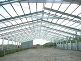 Prefabricated Steel Structure Horse Riding Arena (SS-614)