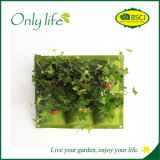 Onlylife Felt Economical Vertical Wall Planter with 6 Pockets