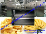 Factory Direct Sale Banana Puree Processing Line/Production Line