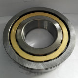 Cylindrical Roller Bearing Thrust Bearing N/Nu/NF/Nj/Nup/Ncl/Rn/Rnu Single Double Row
