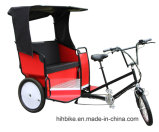 Motorized Rickshaw Adults Tricycle with Back Seats